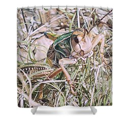 Shower Curtain featuring the painting Giant Grasshopper by Joshua Martin