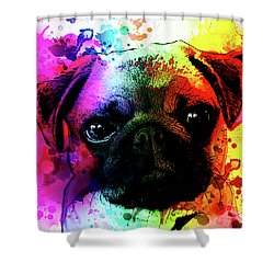 Giant Pug Watercolor Print  Shower Curtain