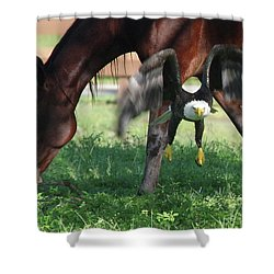 Giddy Up. Shower Curtain