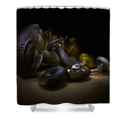 Shower Curtain featuring the photograph Gifts Of September by Alexey Kljatov