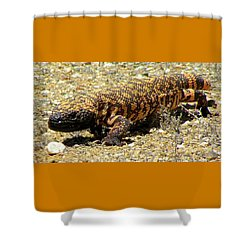 Gila Monster On The Prowl Shower Curtain