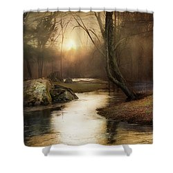 Shower Curtain featuring the photograph Gilded Woodland by Robin-Lee Vieira