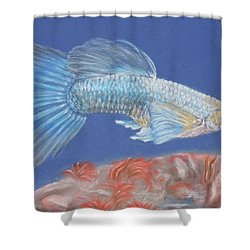 Gill Shower Curtain