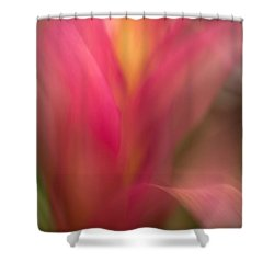 Ginger Flower Blossom Abstract Shower Curtain