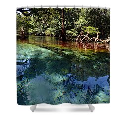 Ginnie Springs Shower Curtain
