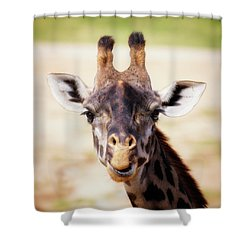 Giraffe Face Shower Curtain