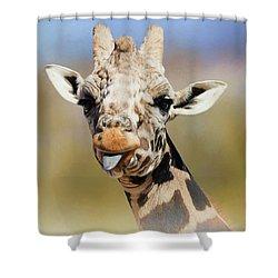 Giraffe Giving The Raspberry Shower Curtain