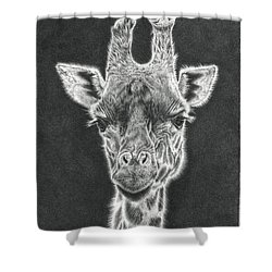 Giraffe Pencil Drawing Shower Curtain