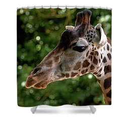 Giraffe Portrait Shower Curtain