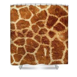 Giraffe Skin Close Up 2 Shower Curtain