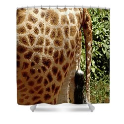 Giraffe Tails Shower Curtain