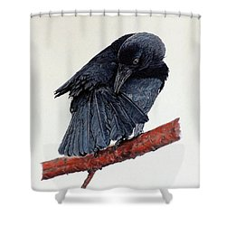 Girdie Shower Curtain