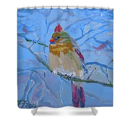 Shower Curtain featuring the painting Girl Cardinal by Francine Frank