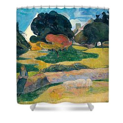 Girl Herding Pigs Shower Curtain