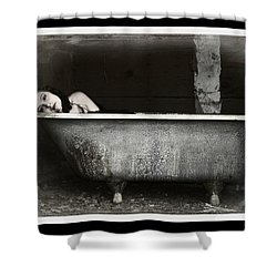 Girl In A Bath Tub  Shower Curtain