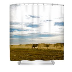 Git Along Shower Curtain