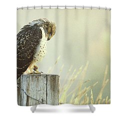 Giving Thanks.. Shower Curtain