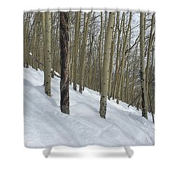 Gladed Run Shower Curtain