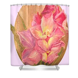 Gladiolas Oval Shower Curtain