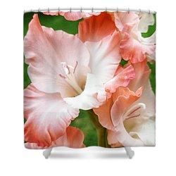 Gladiolus Ruffles  Shower Curtain