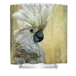Glamour Girl Shower Curtain by Lois Bryan