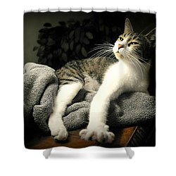 Higgins Shower Curtain by Diana Angstadt