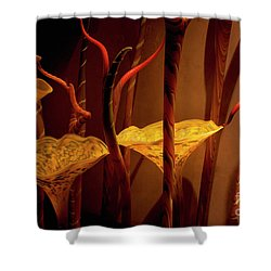 Shower Curtain featuring the photograph Glass Art by Ivete Basso Photography