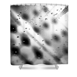 Glass Shower Room Door Shower Curtain