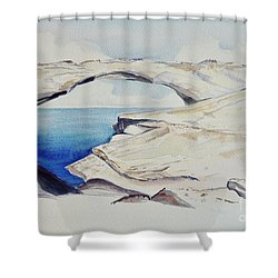 Shower Curtain featuring the painting Glass Window by Patricia Piffath