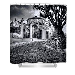 Glasshouse And Tree Shower Curtain