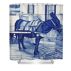 Glazed Tiles Shower Curtain by Gaspar Avila