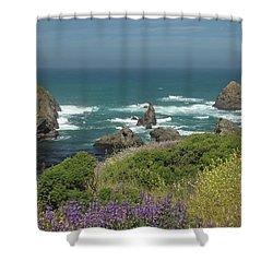 Gleason Beach Shower Curtain