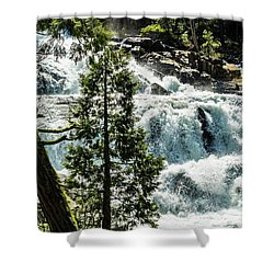 Glen Alpine Falls 1 Shower Curtain