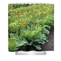 Glenveagh Castle Gardens 4276 Shower Curtain