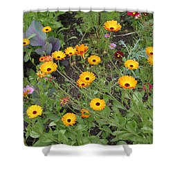 Glenveagh Castle Gardens 4279 Shower Curtain