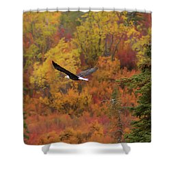 Glide Path Shower Curtain by Ed Boudreau