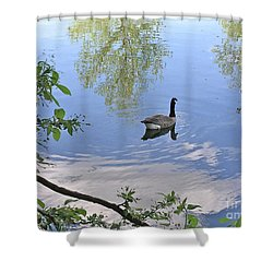 Gliding Goose Shower Curtain