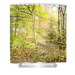 Glimpse Of A Stream In Autumn Shower Curtain by A Gurmankin