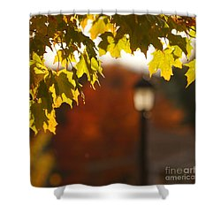 Shower Curtain featuring the photograph Glimpse Of Autumn by Aimelle