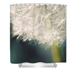 Shower Curtain featuring the photograph Glisten by Amy Tyler
