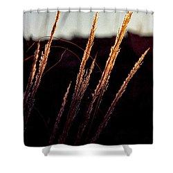 Glistening Grass Shower Curtain