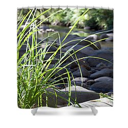 Shower Curtain featuring the photograph Glistening In The Sunlight by Linda Lees