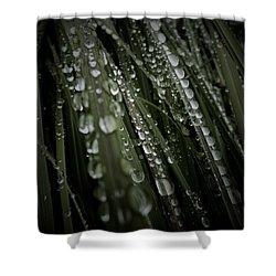 Glistening Jewels Shower Curtain by Tim Good