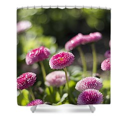 Glittering Daisies Shower Curtain