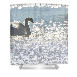 Glitz And Glamory Swan Shower Curtain