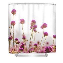 Globe Amaranath Shower Curtain by Hyuntae Kim