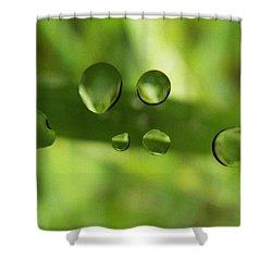 Globules Shower Curtain