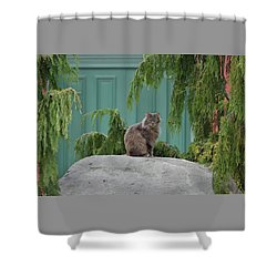Glorious Cat Shower Curtain
