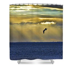 Shower Curtain featuring the photograph Glorious Evening by Jan Amiss Photography