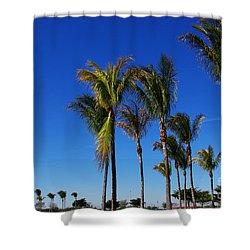 Glorious Palms Shower Curtain by Zalman Latzkovich